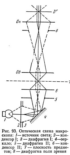 Оптическая схема микроскопа.